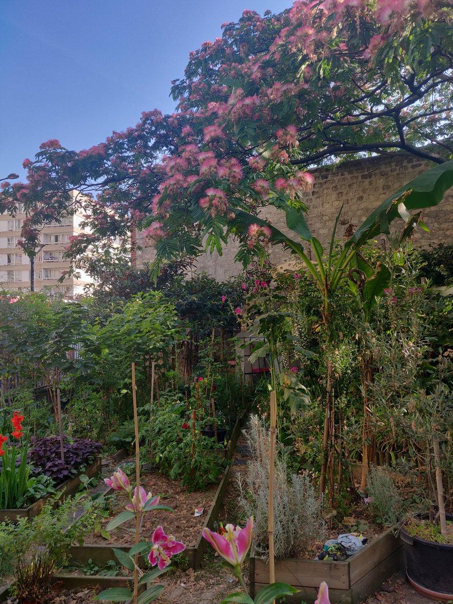 Jardin Ouvrier Le Havre jardinsouvriers hashtag on twitter