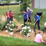 "Image for the Tweet beginning: The @PurdueExtension rainscaping (think ""stormwater"