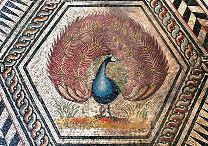 A large presence of the peacock in Roman mosaics