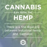 "Image for the Tweet beginning: ""<0.3% THC distinguishes industrial #hemp"