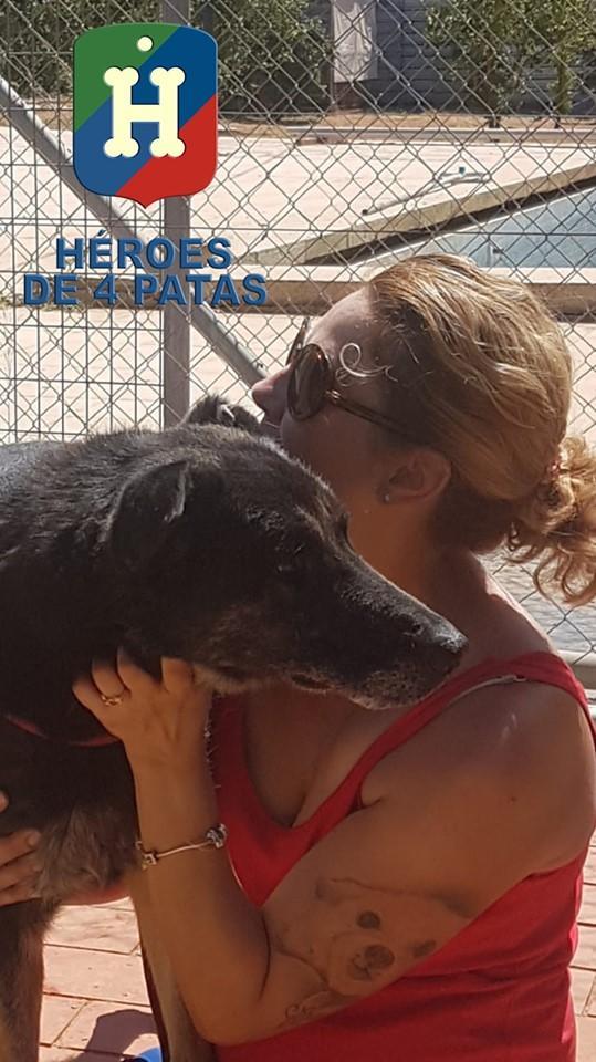 #AyudaParaJene Os pedimos ayuda y difusión para una de nuestras Heroínas que tenemos en residencia. También os facilitamos los enlaces que figuran en el texto adjunto. Muchas gracias. ❤️  https://www.teaming.net/heroesde4patas?lang=es_ES… http://www.adoptaunjubilado.org