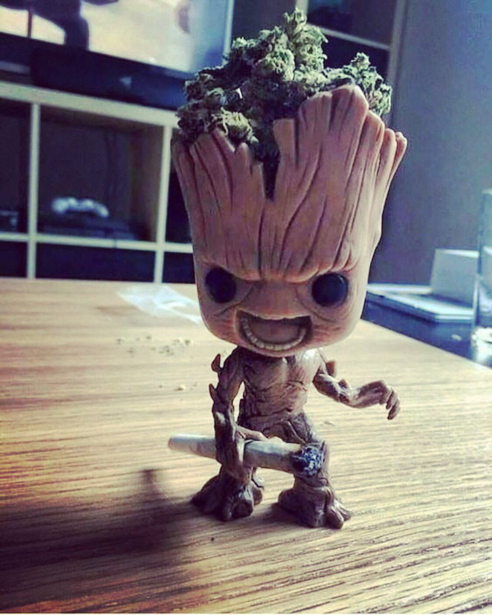 Groot is out here living his best life 🔥 #groot #cannabis #WeedLover