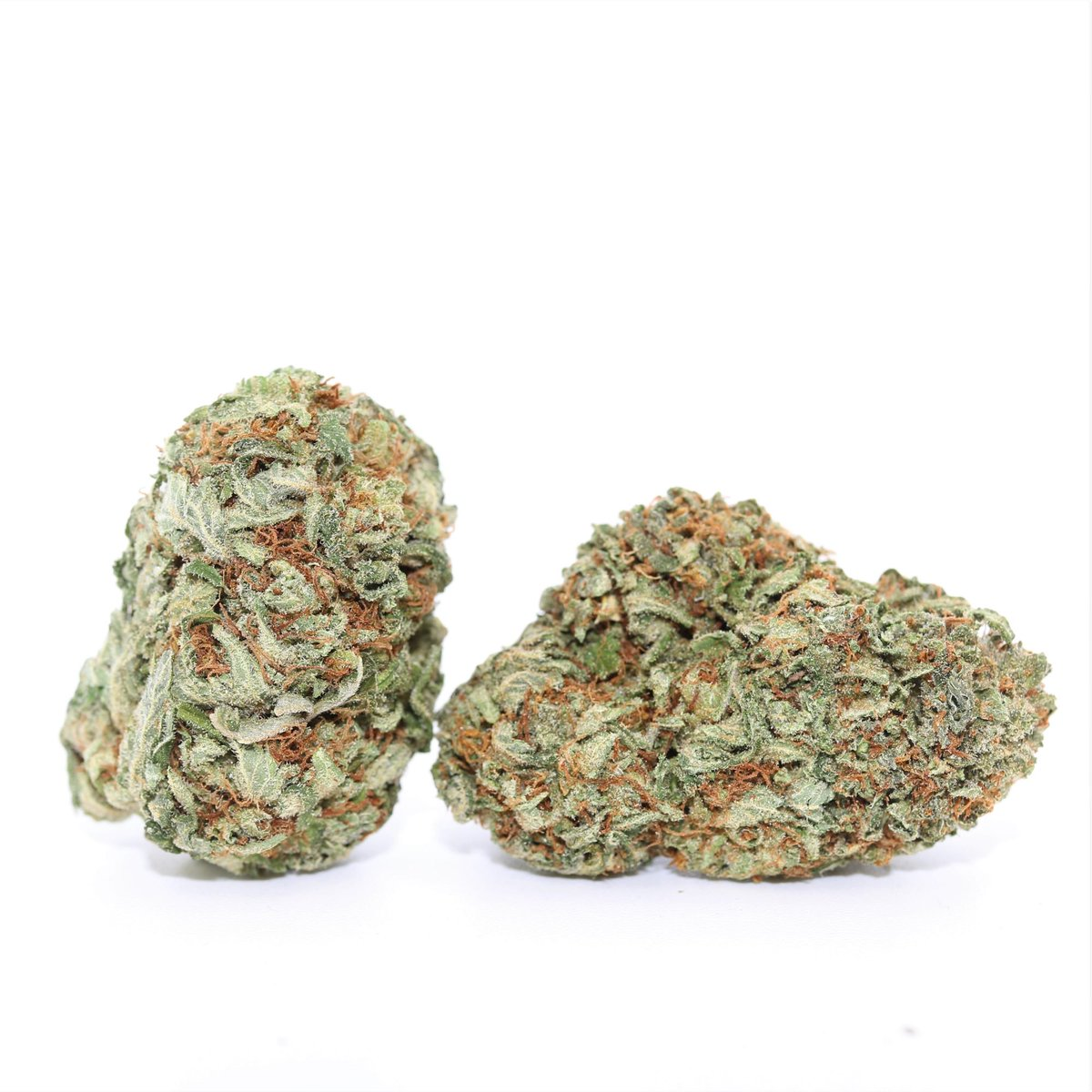 #WeedDeals is back for another wonderful #WeedCrushWednesday this time we bring you the high flying Scout Master 🔭 Best choice to help get higher then the clouds! ☁️ #THC #marijuananews #CannabisCommunity #StonerFam #weedlife #WeedLover #maryjane #marijuana #Hybrid #Sativa #CBD