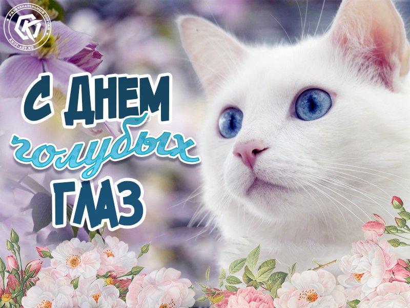 Открытка день голубых глаз, поздравление одноклассников февраля