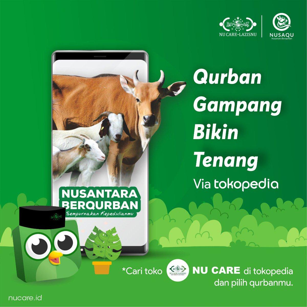 6000 Download Gambar Hewan Qurban HD