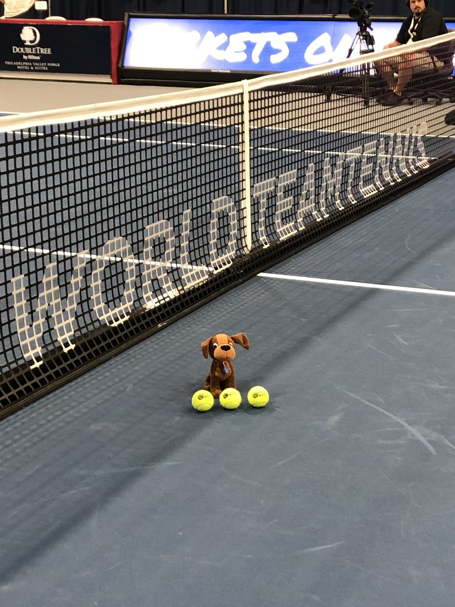 New Balls Please @WorldTeamTennis International Ball Dog for the @PhillyFreedoms this week! #luckydog 3/3 wins at home! See you soon @feliciano_lopez @OrlandoStormWTT<br>http://pic.twitter.com/WqCSE2g1RP