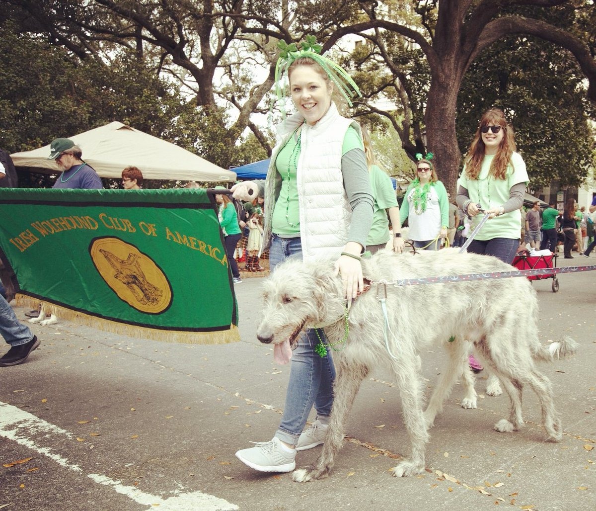 It's the dog days of summer but at least we're another month closer to St. Patrick's Day!   #savstpats #savannahstpats #savannah #stpatricksday #savannahstpatricksday #irish #irishamerican #parade<br>http://pic.twitter.com/D3aJpK2pEE