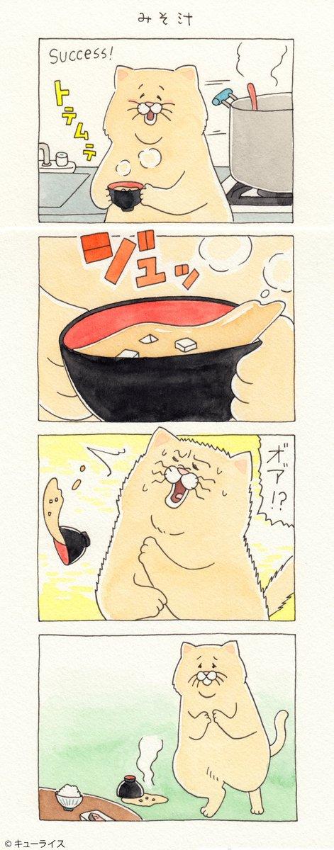 4コマ漫画ネコノヒー「みそ汁」/miso soup   単行本「ネコノヒー3」発売中!→