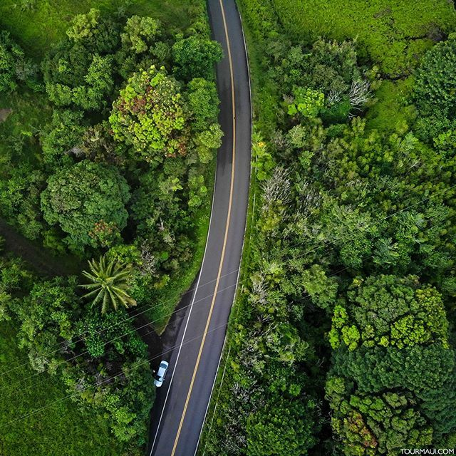 This is the #roadtohana!  The most beautiful drive on our planet.  @tourmaui<br>http://pic.twitter.com/d8EYjnCMvC