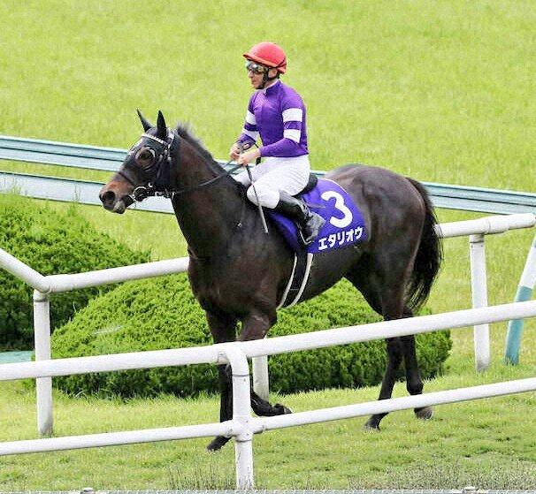 宝塚記念9着のエタリオウ(牡4栗東・友道厩舎)の今秋はジャパンCを目標にするとのこと。「最強の1勝馬」と称される同馬ですが、鞍上や始動戦も含めて、今後の動向が注目されますね。https://t.co/Akgk53olI9