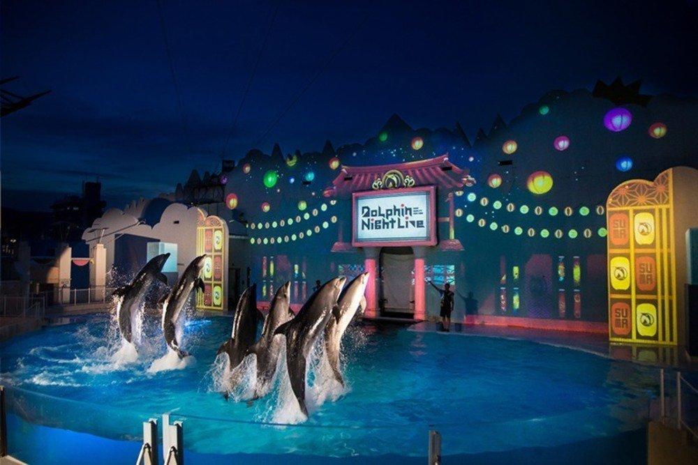 神戸・須磨海浜水族園のナイトアクアリウム、光と色が織りなす切り絵アートやイルカパフォーマンス -