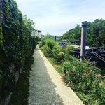 Image for the Tweet beginning: #JeudiPhoto  Balade estivale sur les berges