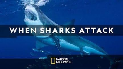 On tonight's NEW episode of #WhenSharksAttack on @NatGeo, watch as investigators race to find out why shark attacks are on the rise in Western Australia.  Find it on channel 90/590 HD TONIGHT at 8:00 PM! <br>http://pic.twitter.com/16uN72H2IO