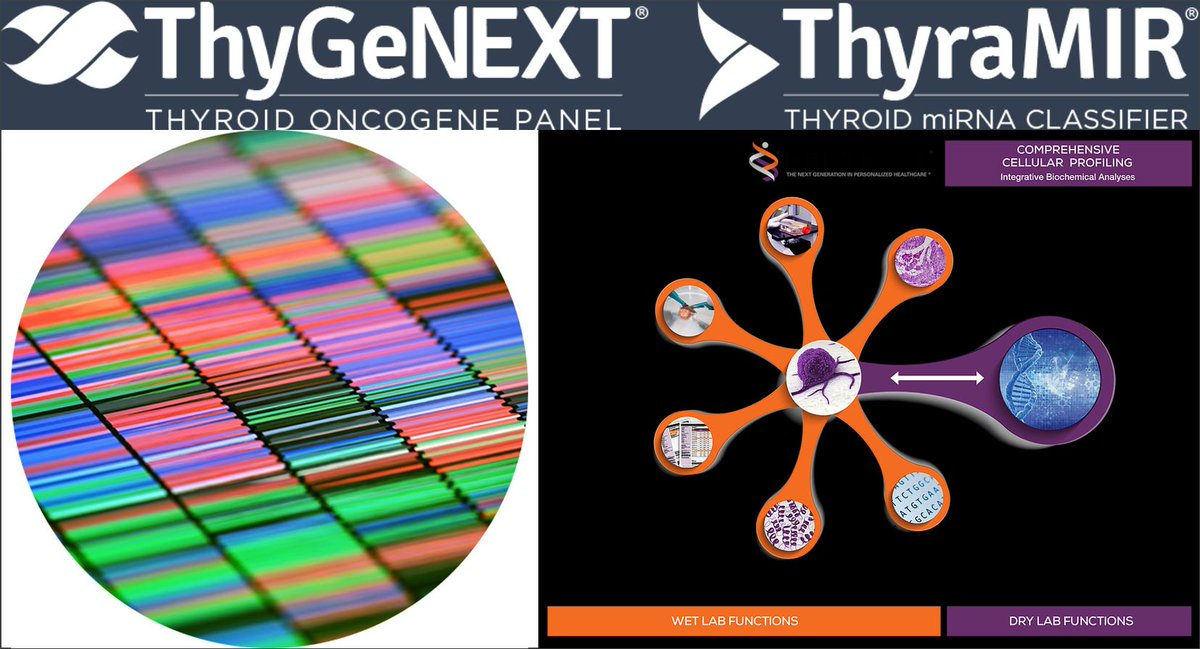 Interpace #Diagnostics & Predictive #Oncology's #Helomics tackle #ThyroidCancer w/ #ArtificialIntelligence  Couple patient-derived #tumor profiling w/ #ThyGeNEXT & #ThyraMIR to build #model & ID druggable targets  https://thygenext-thyramir.com/  #AI #cancer #genomics