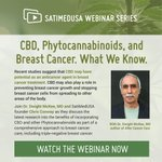 If you missed our latest webinar on CBD, Phytocannabinoids, and Breast Cancer, you can watch the replay here. https://t.co/YF8wxPZUDR #Phytocannabinoids #CBD #cbdoil #cbdoilbenefits #cbdoils #cbdoilhelps
