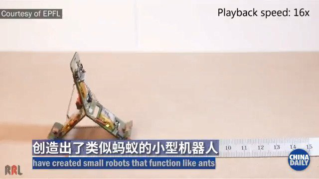 What do robots and ants have in common? Not much ... until now. Researhers at the Swiss Federal Institute of Technology's Reconfigurable Robotics Lab @EPFL have created tiny #robots that can communicate with each other and function like ants.