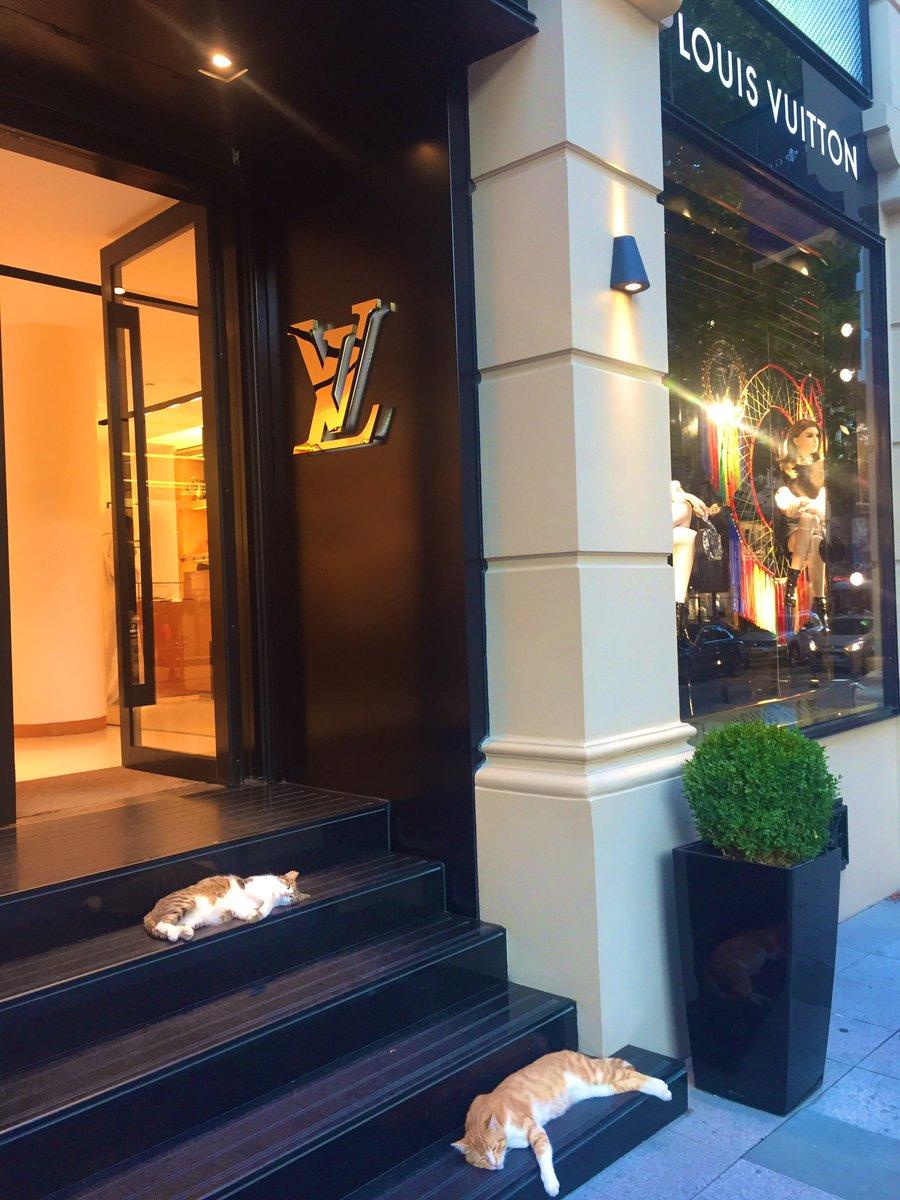 Only in #Istanbul  <br>http://pic.twitter.com/5k9iDGkzq3 – à Louis Vuitton