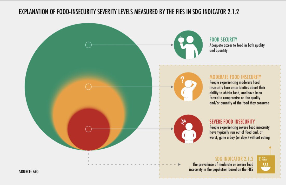 New measurements in #SOFI2019 allow a more nuanced view of #foodinsecurity not just #821million #hungry, but actually 2Billion: 1.3B are moderately food insecure & 704M are severely #foodinsecure. #SOFI @MaximoTorero @FAONorthAmerica