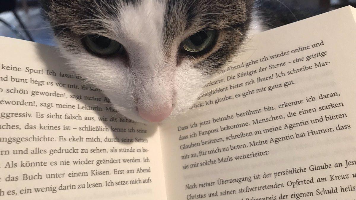 lenkt überhaupt nicht ab vom Lesen, nein 🙄