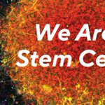 "Image for the Tweet beginning: SCN's 2018/19 ""We Are Stem"