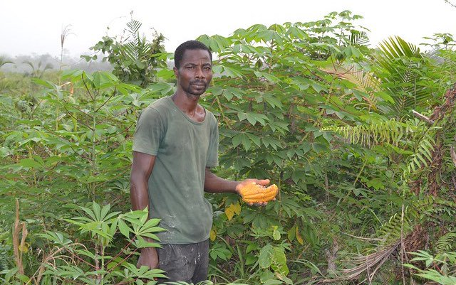 Why #Ghana's estimates of its support for agriculture – averaging 9.2% of the budget over 15 years – may be less than meets the eye http://bit.ly/2XI36PQ @ReSAKSS
