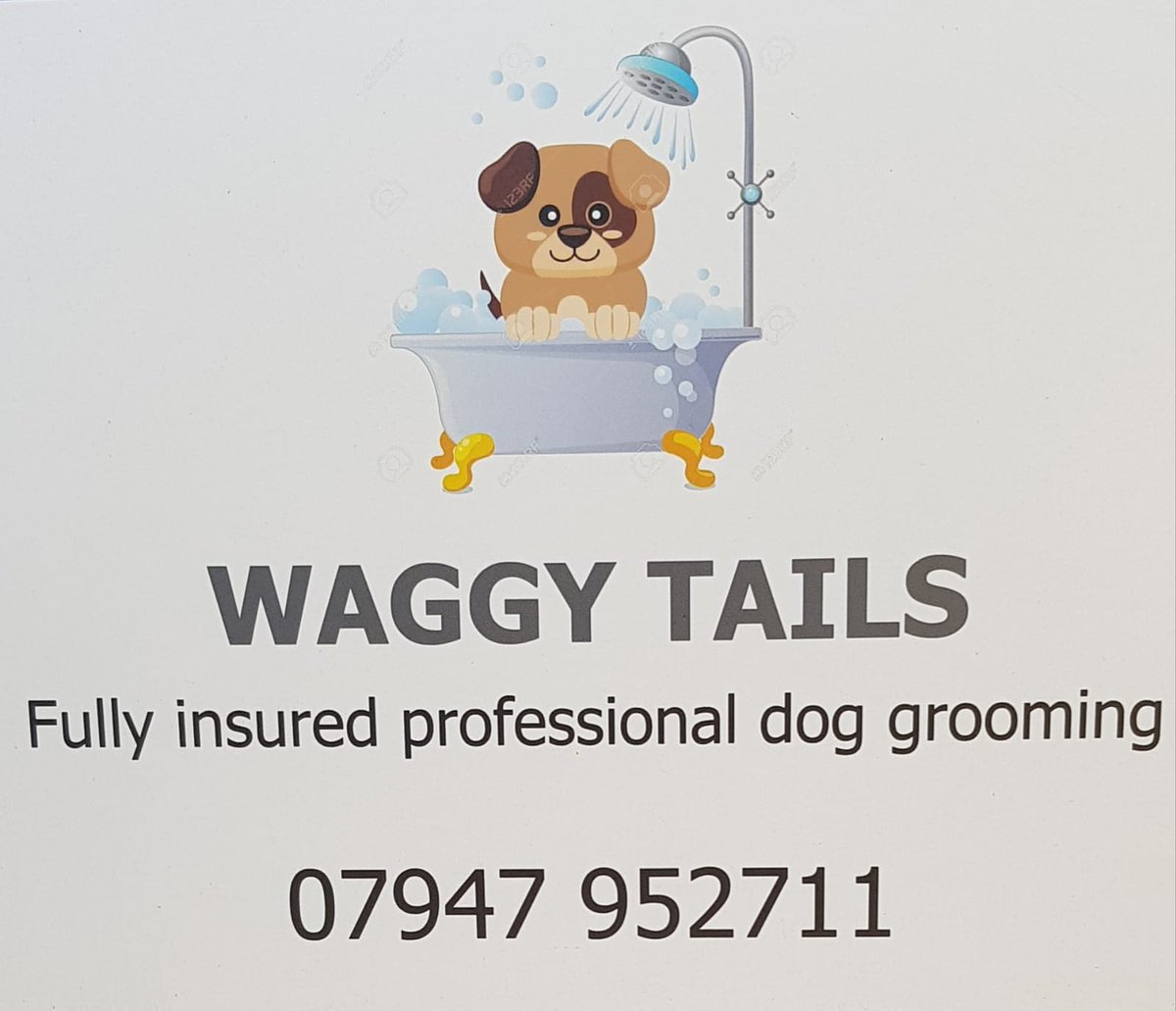 If anyone is looking for a dog groomer in Liverpool I can highly recommend #waggytails  anyone who knows me knows I'm sooooo fussy when it comes to my boy @the_cockapoo they provide such a personal service and will do what you ask ! Please retweet and support #localbusiness  <br>http://pic.twitter.com/sJsmTijTCE