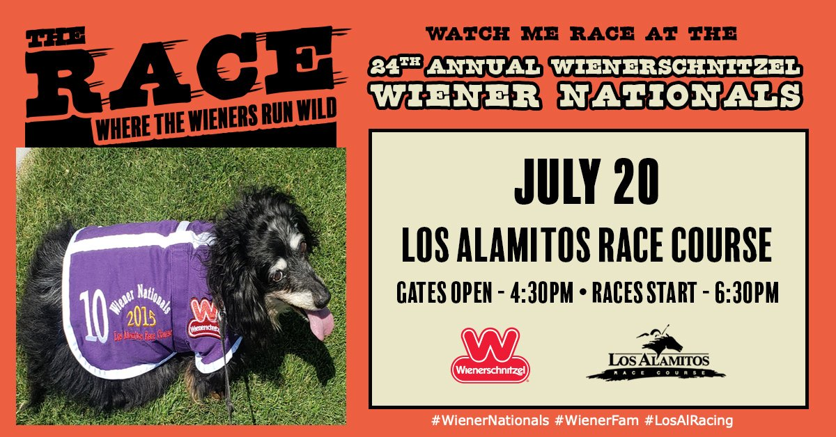 Who let these dogs out!!?? Come see Princess Dora race at the 24th Annual #Wienerschnitzel #WienerNationals on Saturday, July 20th at 6:30pm! #WienerFam #LosAlRacing #dogmom @LrmPublicity #LRMPublicity @losalracing @wienerschnitzel  https://www.losalamitos.com/wienernationals/Landing.aspx?fbclid=IwAR1kDcScgnzRWbRao_vaGSkhcBWnIoR4jkYUfW3vGbZTyJ1Ga3TZ-dh9wv8…pic.twitter.com/FrdUOH6UJ4
