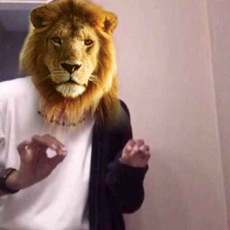 The Lion King (2019)        Cats (2019) Explaining how it's Important that CGI animals Actually look like Animals