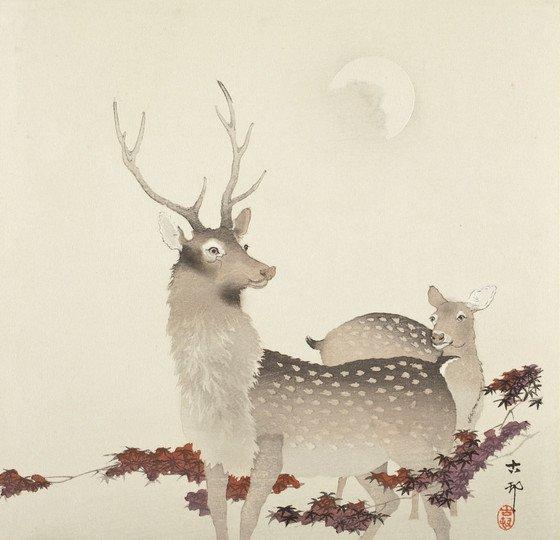 Late Night Collection Highlight: Deer and Moon 🦌 Ohara Shōson, circa 1900 :: photo © Museum Associates/LACMA