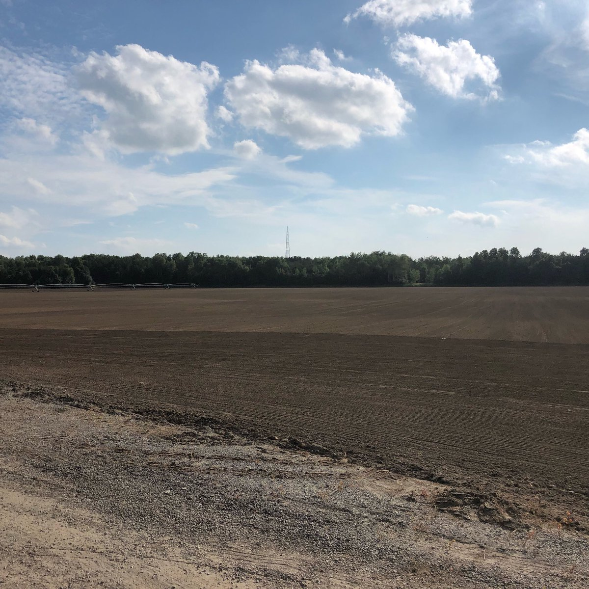 First 30 acres of seed in the ground.  It may be a little early but this field is under pivot and will be up and growing in no time!  #thinkgreencallfairgreen #sodfarming #seedingtime #plant19 https://t.co/zrdTVRkgyZ