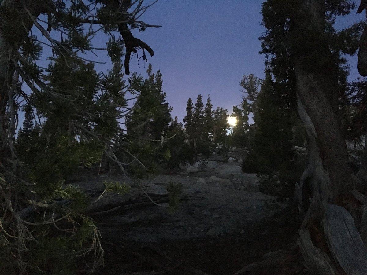 Took an OK moon photo.