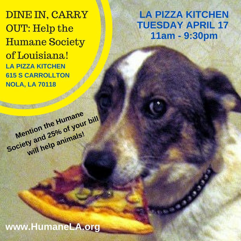 humane society of la on twitter help animals in nola when you