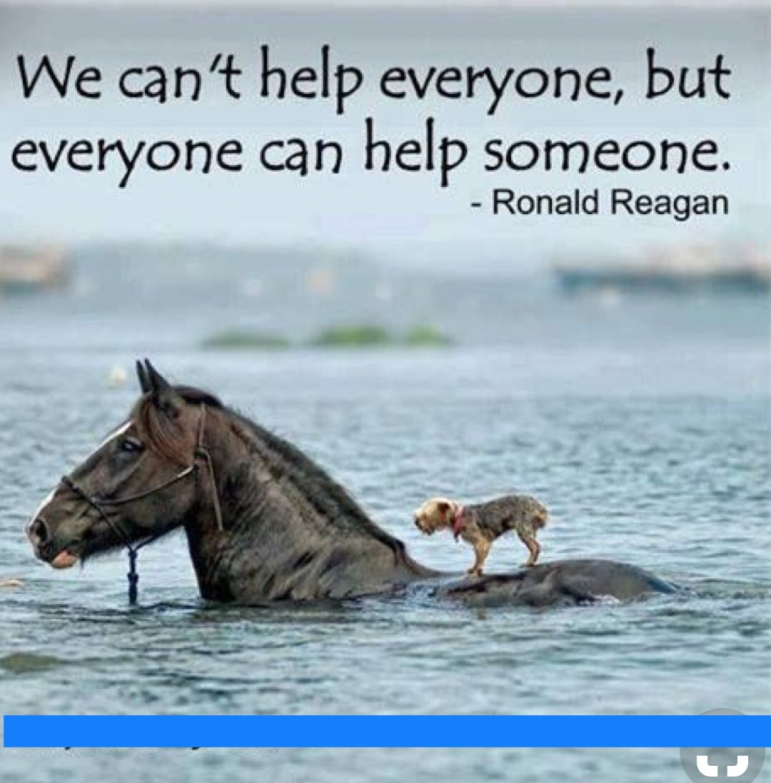 "Happy Sunday Y'all!   ""WE Can't Help Everyone, But EVERYONE Can Help Someone.""            -Ronald Reagan  #SundayMorning  #SundayMotivation <br>http://pic.twitter.com/eH7UsRubvP"