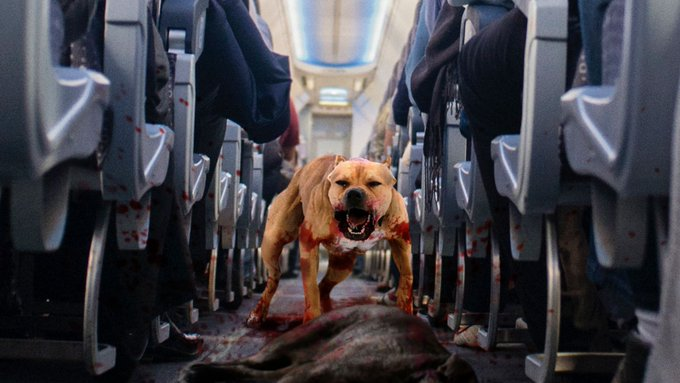#passenger Фото