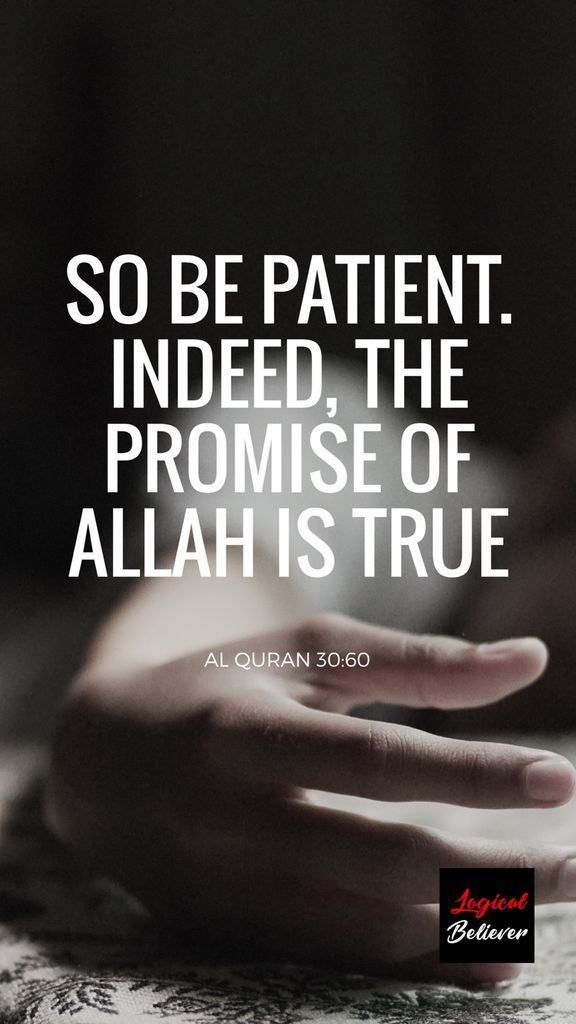 logical believer on so be patient indeed the promise
