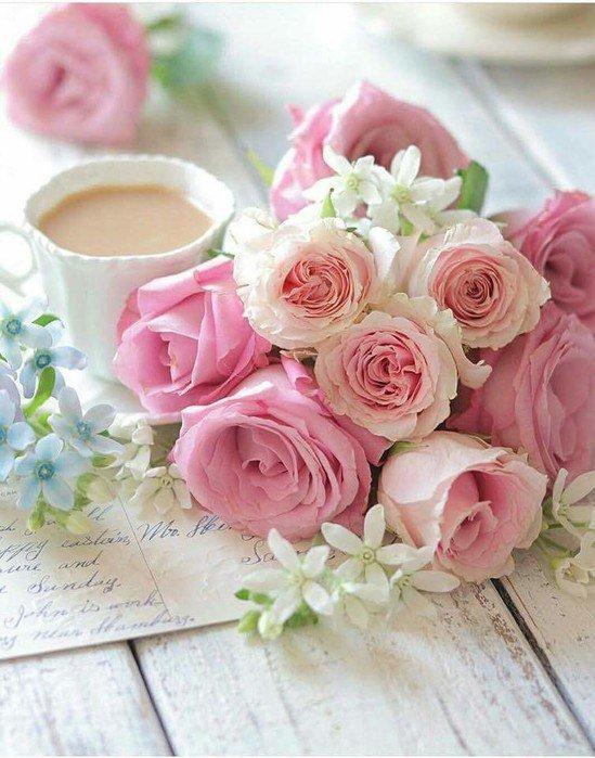 просто картинка нежные розы с добрым утром радости