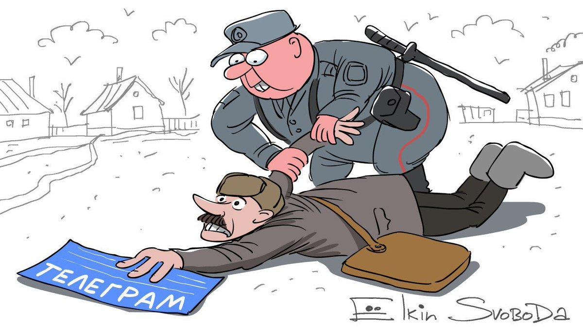 """Спецоперація """"Ведмежа"""": на Закарпатті стався унікальний наступ поліції на ЗМІ"""