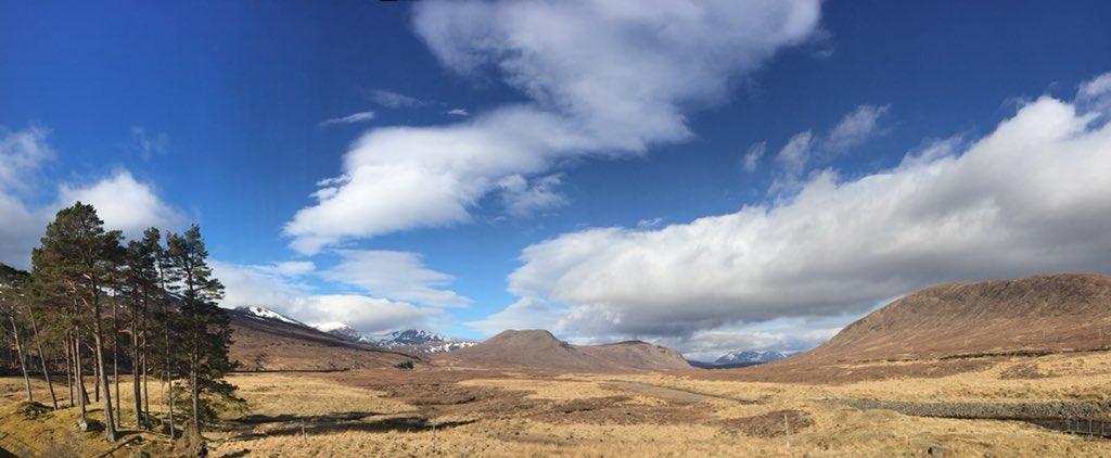 ypi_scotland photo