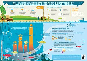[READ]: #MarineProtectedArea&#39;s enhance fisheries by banking sufficient stocks to contribute to nearby populations or areas.  https:// bit.ly/2IWd6td  &nbsp;   @WWFSouthAfrica<br>http://pic.twitter.com/cBBoyZnGOa