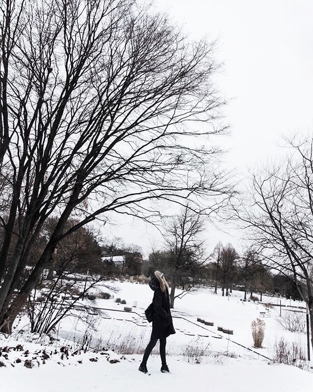 The winter wonderland I experienced in Germany when it snowed for days. ❄️ https://t.co/W9l8oLxFXt