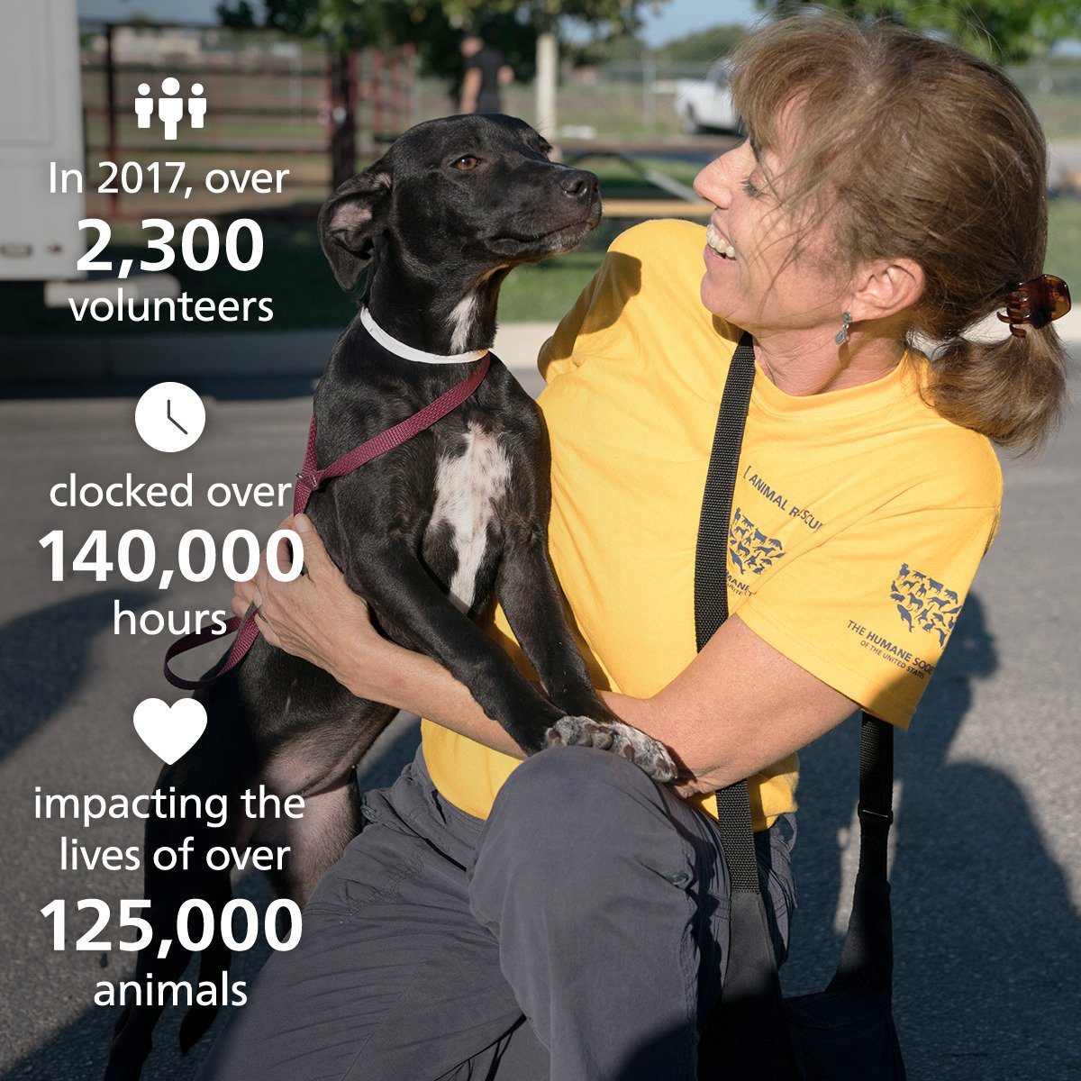 We&#39;re eternally grateful to our volunteers! Thanks to them, the lives of more than 125,000 animals were impacted for the better in 2017.  #NationalVolunteerWeek <br>http://pic.twitter.com/VhBVqOi55x