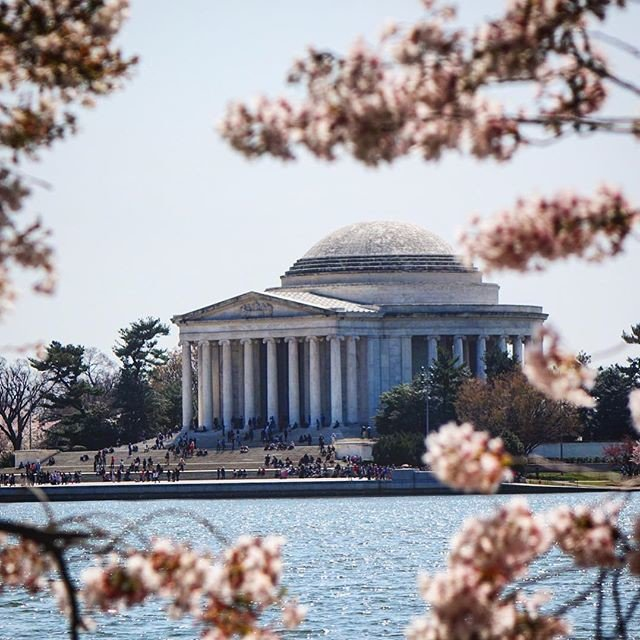 Beautiful day #thomasjefferson  #memorial #cherryblossom  #dc #washingtondc #nicepic <br>http://pic.twitter.com/d4lmec88ER