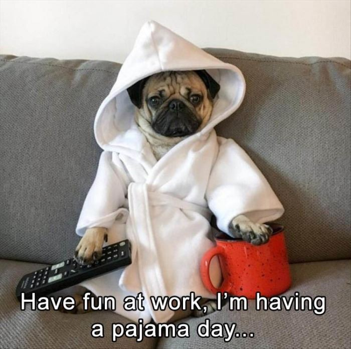 The @WhoopiesMind Monday at 6:30 PM ET interns have started the #WearYourPajamasToWorkDay Party. Join them and @RoeGhost @GoGetChaLife @SCHOENAMYYY @SilipigniMario @WKatCrook @SeanMODonnell1 @geoffreyclark37 and me tonight for tagging fun!<br>http://pic.twitter.com/fVldF6ES0Z