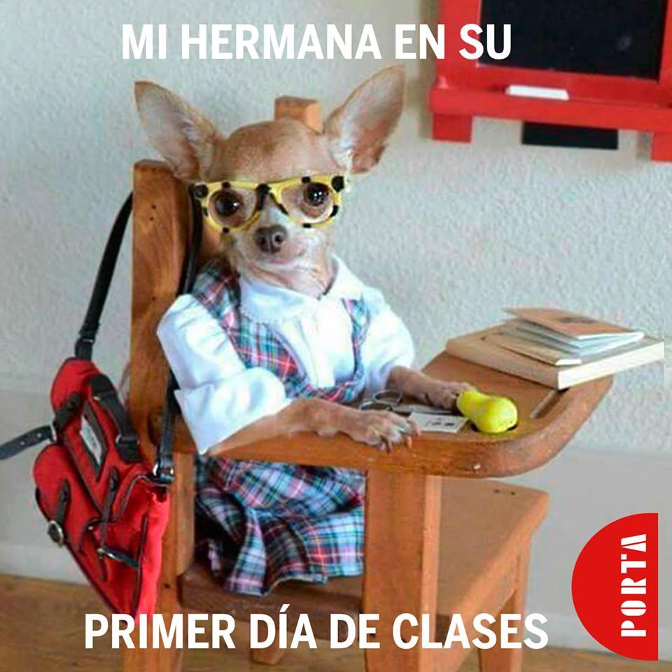 ¡Etiqueta a tu hermana en su primer día de clases!  #Porta #MasQueMochilas #Inspiracion https://t.co/vWaDKHnLg3