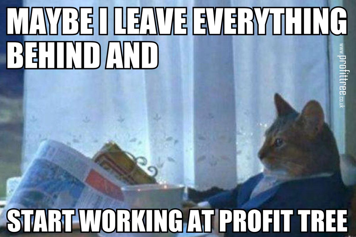 Profit Tree Ltd On Twitter Httpstcoukk9pzofkm Humor Kariera