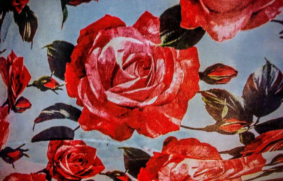 Good Luck In Life! #MondayMotivation #ArtTherapy #paintitrose<br>http://pic.twitter.com/axyJUq0PI6