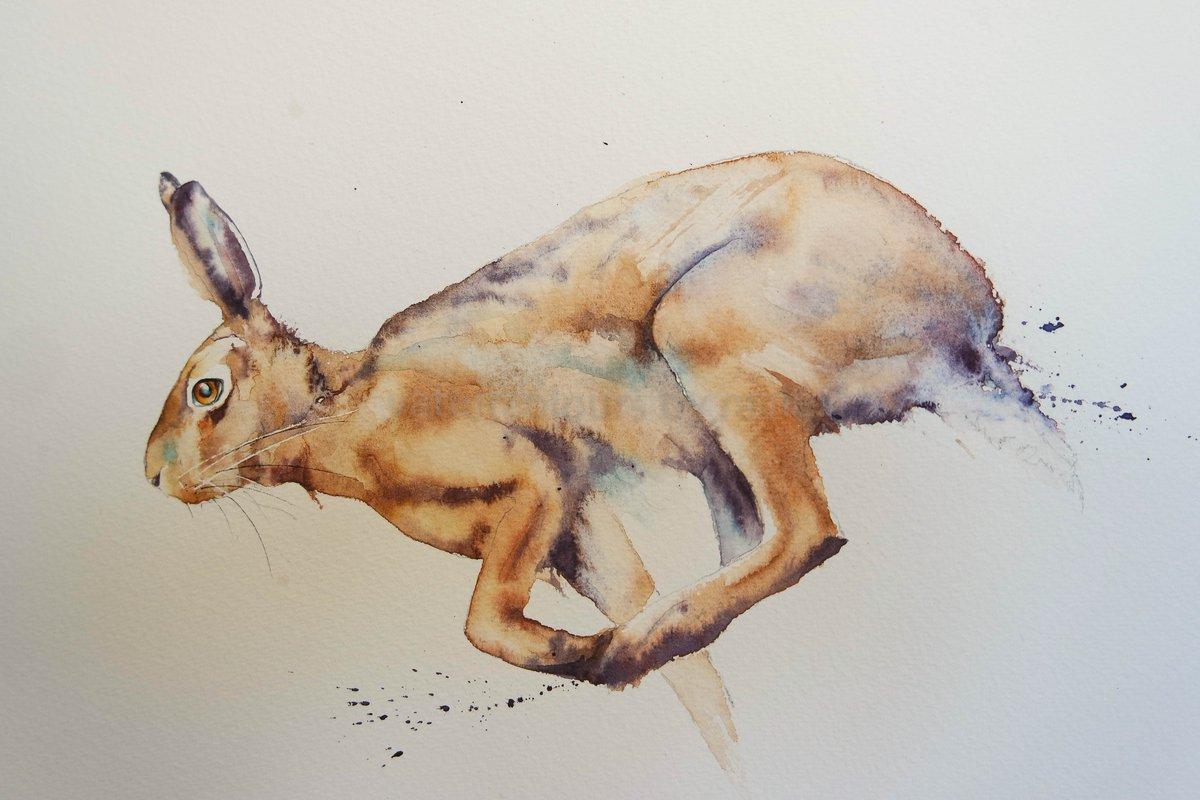 Running Hare #watercolour #animalportrait #hare #wildlifeart #BigArtBoost #wildlife #thedailysketch #watercolourpainting #movement #devon<br>http://pic.twitter.com/ffcAZVo6sx