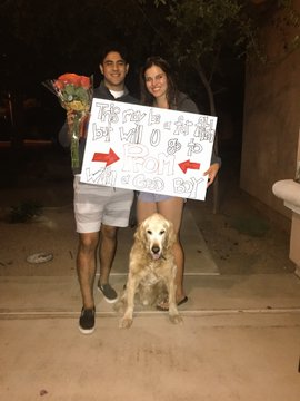 If You Didnt Know Dog Promposals Were A Thing You Do Now Woow9
