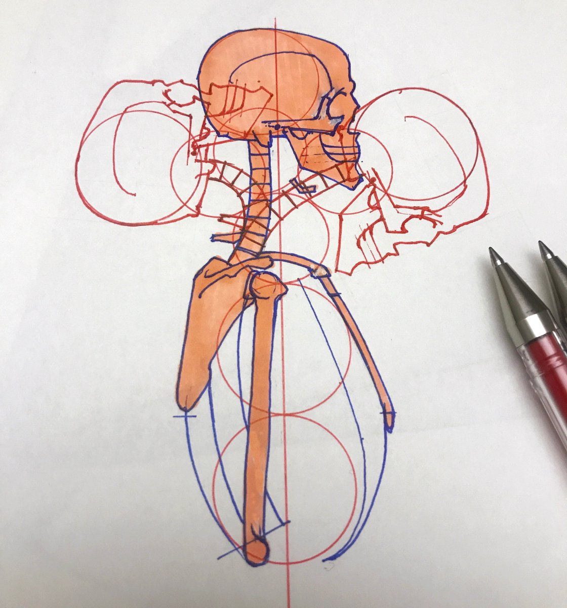 Anatomy Drawing for Artists (@pencil4anatomy) | Twitter