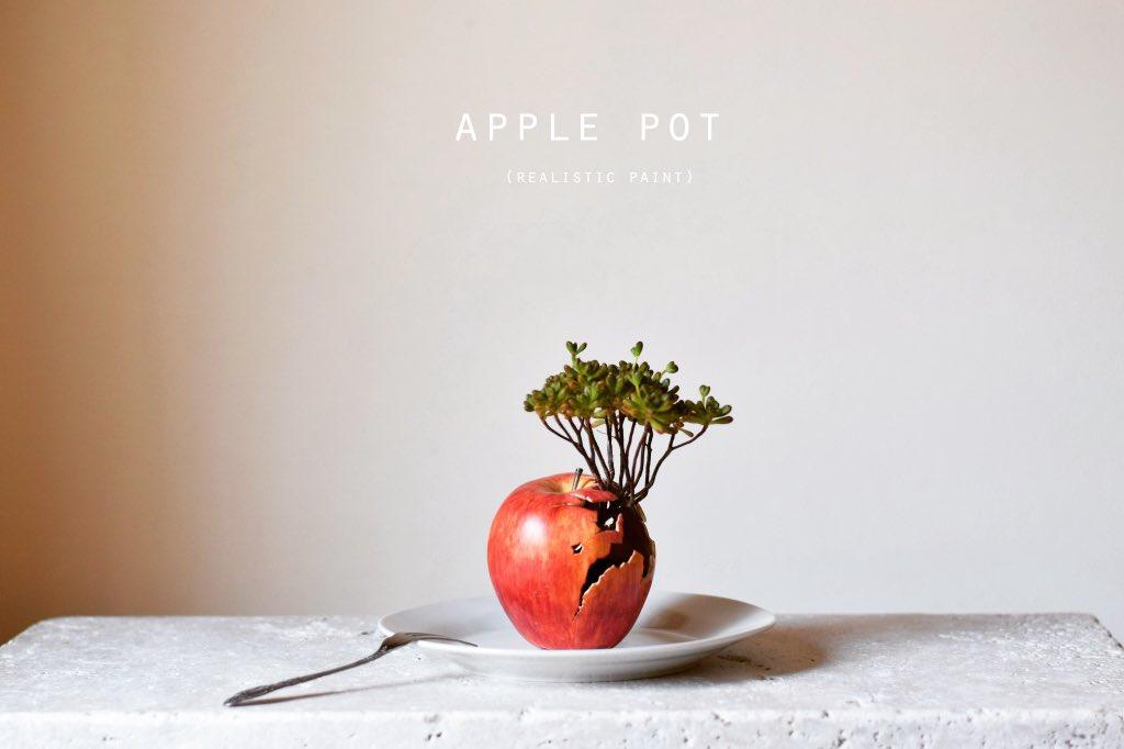 オブジェを作り、それに植物等植えています。 アートプランターです。  #4月なのでフォロワーさんに自己紹介しようぜ